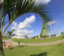 Parque Max Feffer terá atrações do Dia Nacional do Samba neste domingo