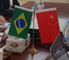 Prefeito apresenta Suzano para uma das maiores empresas da China
