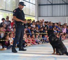 Cães da GCM de Suzano se apresentam para 500 estudantes de Palmeiras
