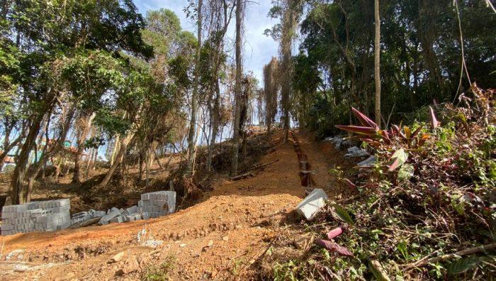 Fiscais impedem desmatamento em área de preservação ambiental