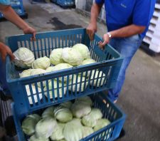 Banco de Alimentos atende a 1,5 mil famílias durante a quarentena