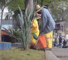 Praça João Pessoa passa por trabalhos de manutenção