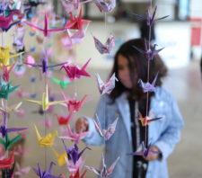 Projeto estimula esperança a partir da confecção de dobradura de pássaro oriental