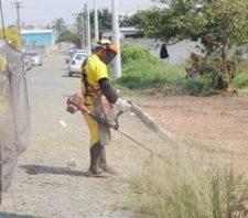 Fim de semana é marcado por mutirão de zeladoria na Vila Urupês