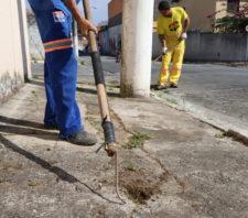 Mutirão leva serviços de zeladoria à região do Parque Santa Rosa