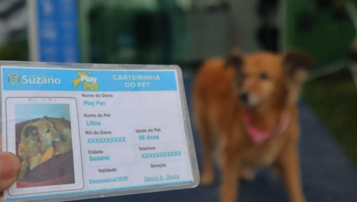 PlayPet orienta sobre atualização da carteira de vacinação dos cães